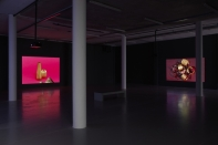 Installation view (2015). Photograph by Stuart Whipps