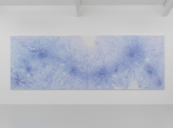 A Deluge, 2015. Pencil and pigment on white aquacryl on canvas and alumInium. 190 x 540 cm