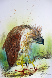 Nextinction - Philippine Eagle Thinking