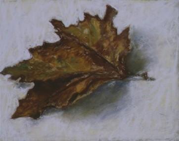 A Dead Leaf, 2002. Pastel on board, 25.5 x 32.2 cm.